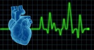 الکتروکاردیوگرافی به طور کامل-مدرسه مهندسی پزشکی-iranianbme.com